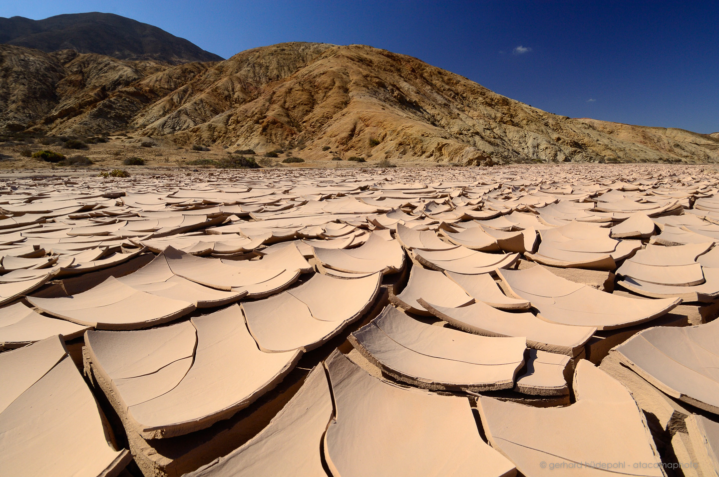 What is the driest desert in the world?